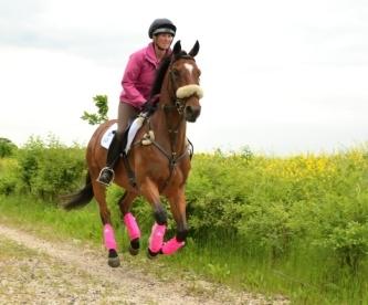 EVENTING! – Elite Equestrian magazine