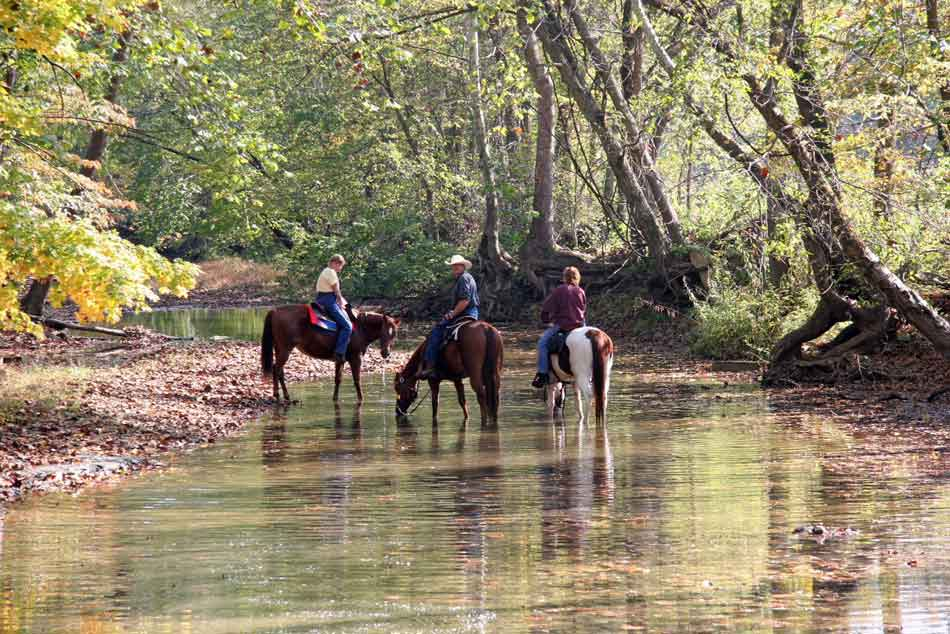 Midwest Trail Ride A Vacation To Paradise Elite