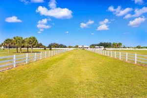 Platinum Luxury Auctions Offers  Vero's Atlantic Crossing Stables Equestrian Estate on June 21st  Vero Beach, FL (May 25, 2014) – Florida's best-kept secret may be the small, elegant city of Vero Beach, which offers its inhabitants the  luxury and tranquility that is not often found in coastal Florida.  Nestled within Vero is a robust equestrian facility known as Atlantic Crossing Stables; a property that boasts 34 pristine acres, several specialized riding arenas, and countless other exciting features bested only by one thing: the fact that this property is being offered for sale in a luxury auction on June 21. No doubt the competition will be exciting because along with Atlantic Crossing's unique location, the property has major appeal for polo jumping, dressage, reining and just about every other equestrian discipline.