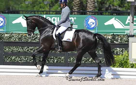 Page 40 – Elite Equestrian magazine