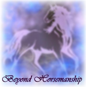 So You're Going Bitless Chuck Mintzlaff #eliteequestrian elite equestrian magazine