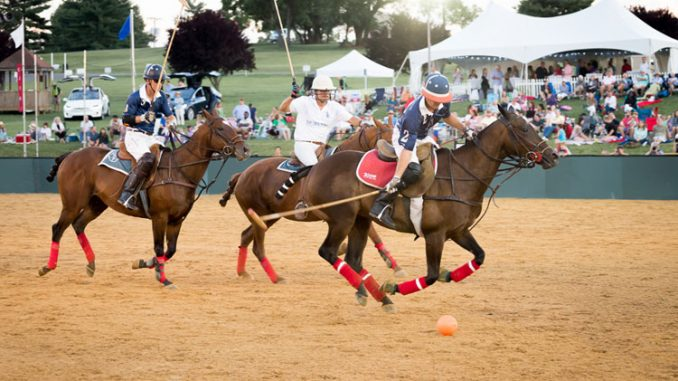 Final Night Of Polo In The Park This Saturday Elite