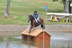 Morven Park Concludes 41st Annual Fall International Horse