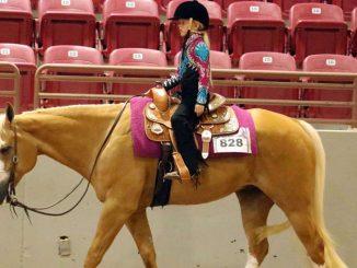 Elite Equestrian Magazine Elite Equestrian Celebrating