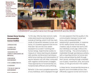 Elite Equestrian Magazine Page 5 Elite Equestrian Celebrating The